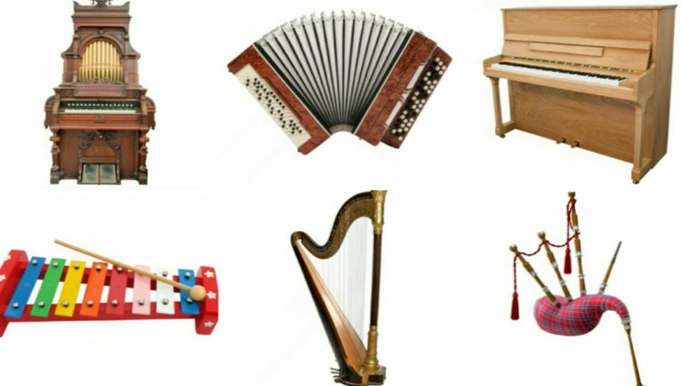 Где можно выбирать и заказывать музыкальные инструменты?